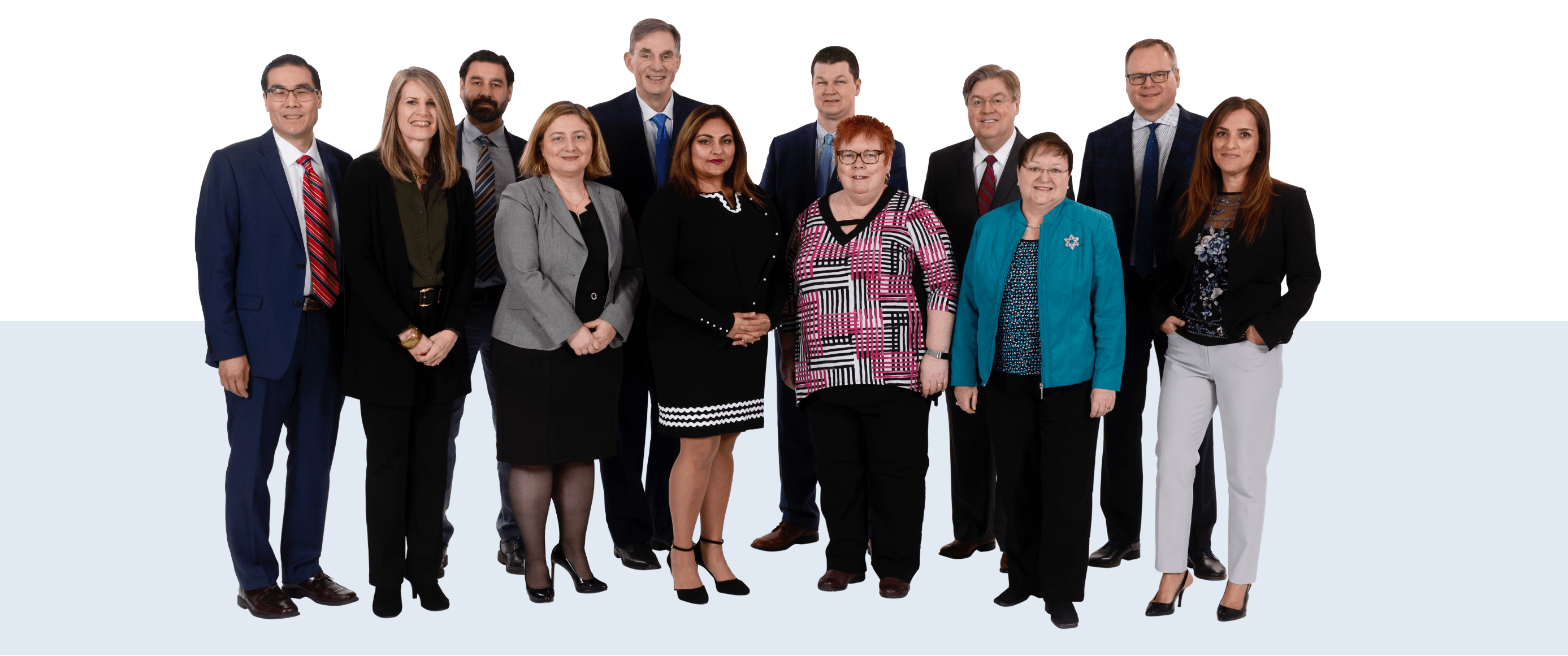 Governance Management Team Image